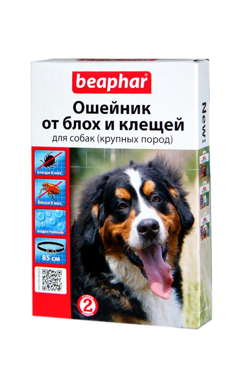 Ошейник от блох и клещей для крупных собак  Beaphar. 85 см.